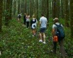true balinese, bali, experience, trekking, adventures, true balinese experience, bali trekking, jungle trekking, village trekking, bali jungle trekking, bali village trekking, bali jungle track