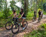 bali, adventure, tours, cycling, mountain, kintamani, elephant park, bali cycling, bali adventures, bali adventure tours, cycling adventures, elephant park cycling, kintamani cycling, jungle track