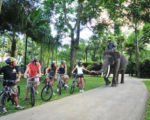 tour packages to Bali bali, tours, cycling, exciting activities in Ubud