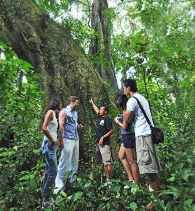 bali, adventure, tours, trekking, bali adventure, bali adventure tours, bali adventure tours trekking, triple trekking, jungle track
