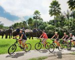 bali cycling adventure