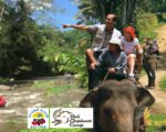 bali, elephant, camp, rafting, packages, bali elephant, bali elephant camp, bali elephant camp rafting package, elephant camp rafting, elephant camp rafting package, bali adventure packages