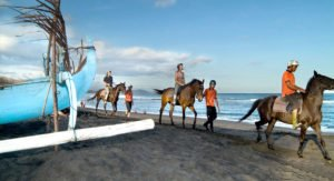 bali, horse, riding, true balinese, experience, adventures, bali horse riding, horse back riding, true balinese experience, saba beach, saba bay