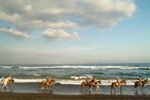 saba beach, horse riding, saba beach horse riding, bali horse riding