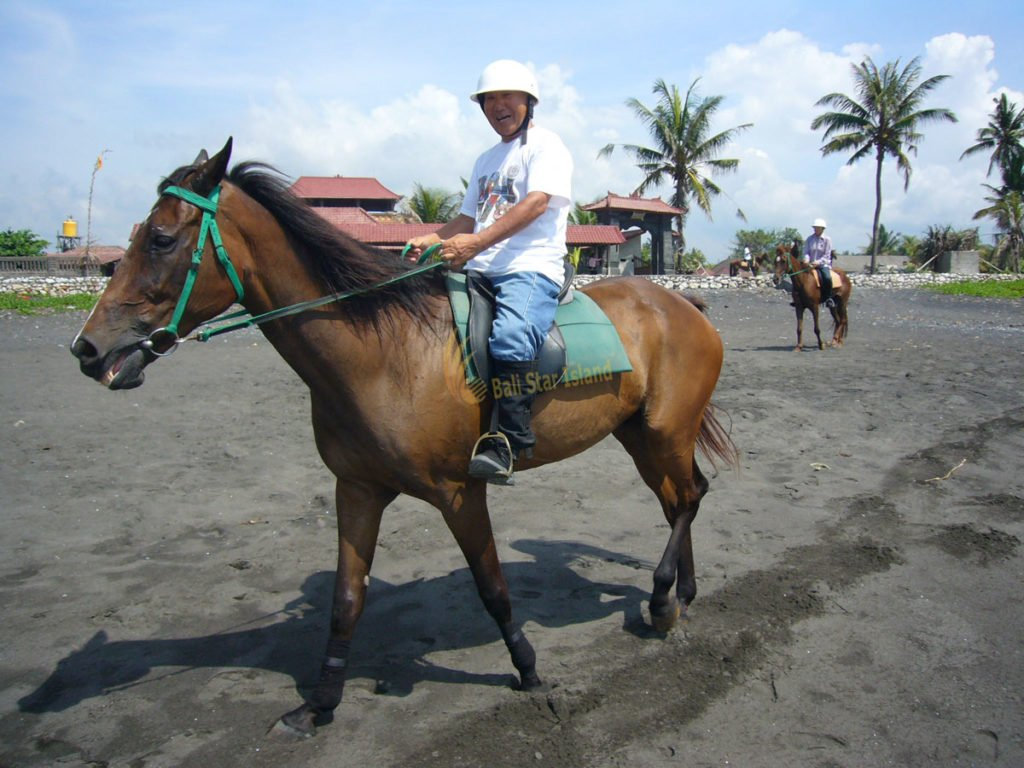 beach horse riding, horse riding trails, bali horse riding