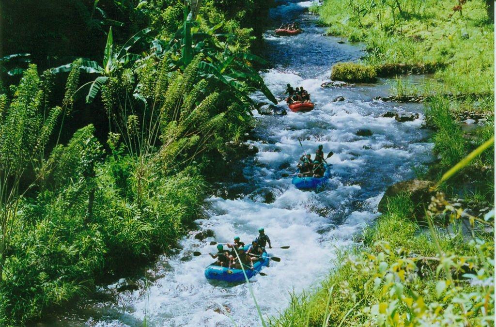 bali, international, rafting, telaga waja river