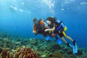 bali, diving, dive, bali diving course, diving courses, open water, open water diving, open water dive course. padi dive, padi diving, padi dive certificate