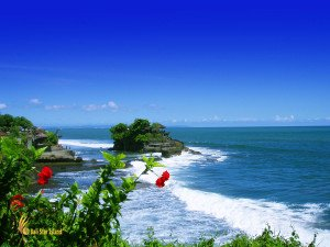 bali sightseeing tour tanah lot, bali, temple, rock, sea, tanah lot bali, tanah lot temple, bali temple on rock, places, temple on sea