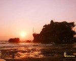 tanah lot, bali, temple, rock, sea, tanah lot bali, tanah lot temple, bali temple on rock, places, sunset, tanah lot sunset, places of interest