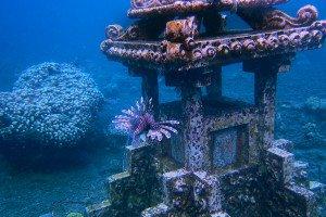 bali, beach, amed, diving, diving spot, amed beach, wreck dive, bali wreck dive, diving spot, bali shipwreck dive