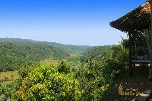 busungbiu, bali, rice terrace, bali rice terrace, busungbiu bali, places of interest, tourist destinations, rice paddy, bali rice terrace, singaraja bali, places, places to visit, bali places to visit, busungbiu rice terrace, scenery