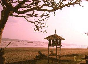 rambut siwi, bali, jembrana, negara, temples, rambut siwi temple, places, sunset, tourist destinations