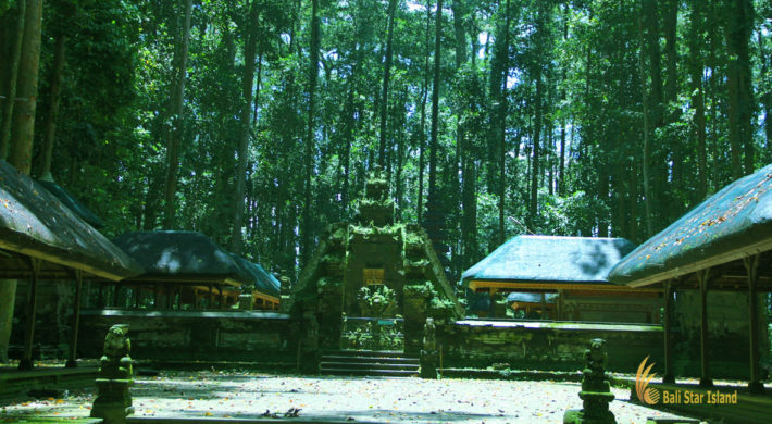 Sangeh Monkey Forest Bali Tourist Destinations Bali Star