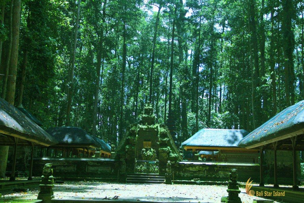 hindu, temple, sangeh, monkey, forest, bali, places, interest, sangeh monkey forest,