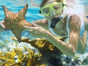 bali, snorkeling, adventures, marine, water sport, activities, bali snorkeling, bali snorkeling adventures, marine water sport, water sport activities, bali marine water sport, underwater life