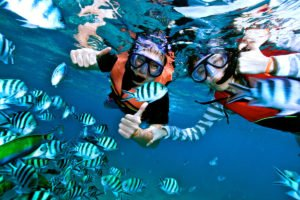 bali, snorkeling, adventures, marine, water sport, activities, bali snorkeling, bali snorkeling adventures, marine water sport, water sport activities, bali marine water sport, fishes