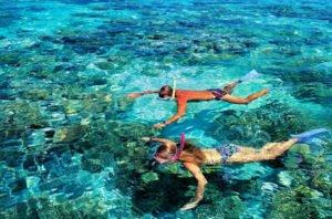 bali, snorkeling, adventures, marine, water sport, activities, bali snorkeling, bali snorkeling adventures, marine water sport, water sport activities, bali marine water sport, coral view