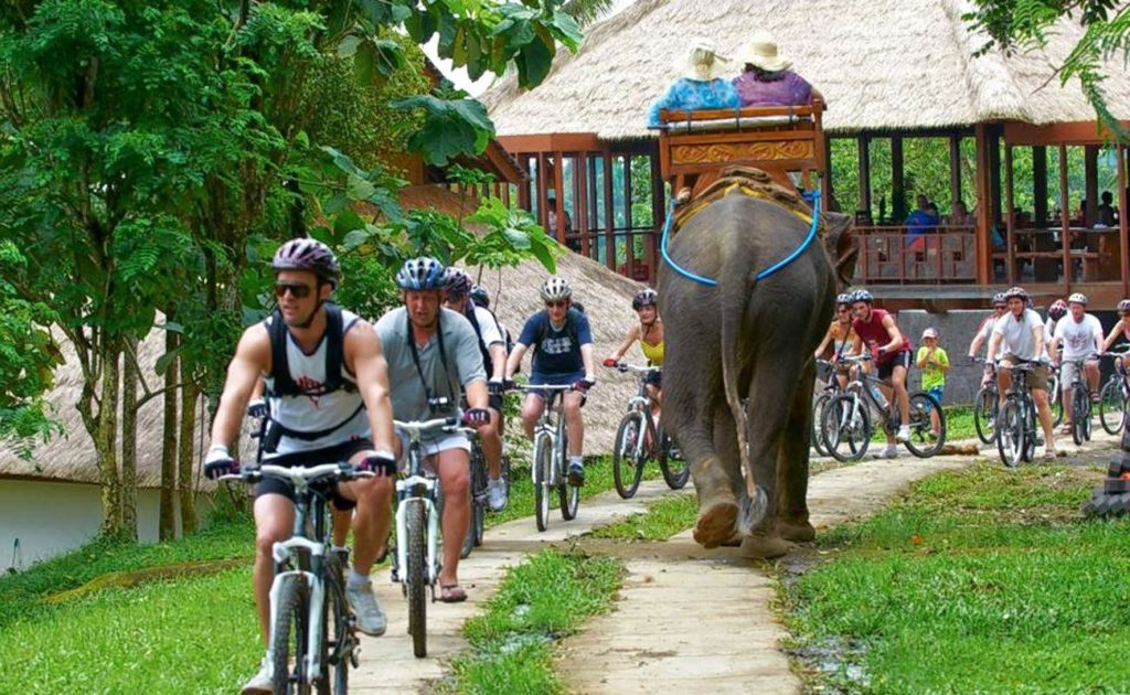 elephant park route