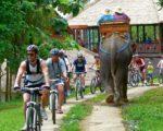carangsari, bali village, cucling, tour, a true balinese, experience, carangsari village, cycling tour, carangsari village cycling, a true balinese experience