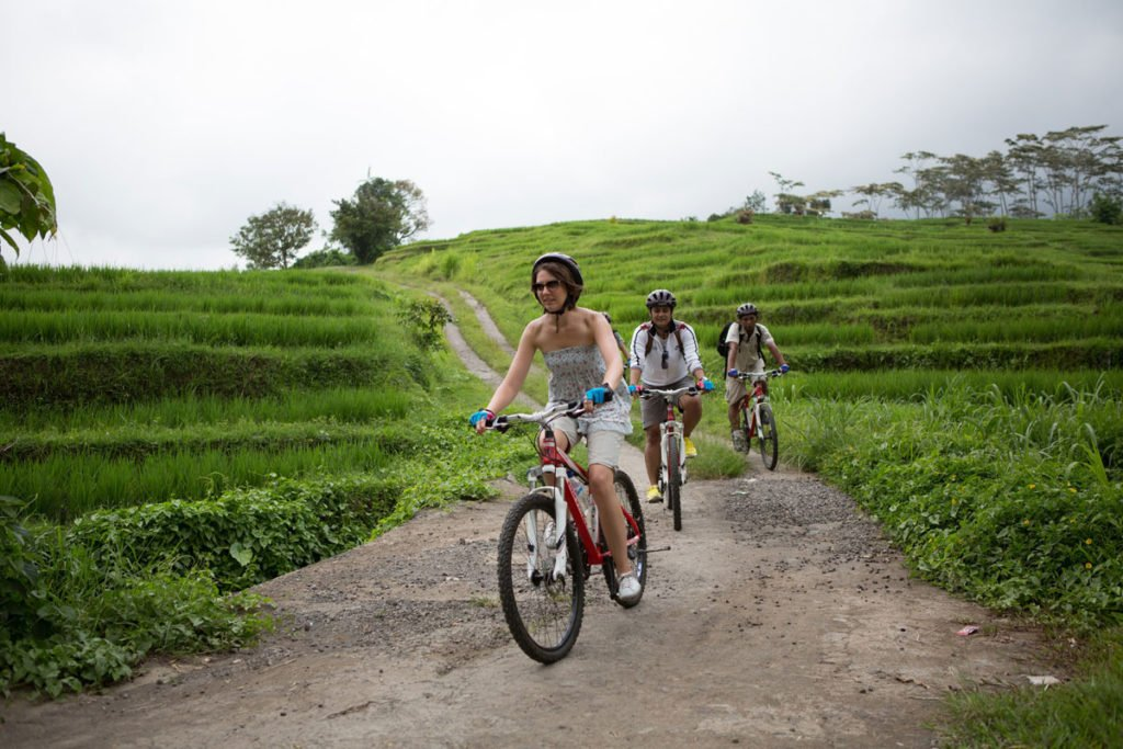 jatiluwih rice terrace, jatiluwih cycling, jatiluwih, bali, rice terrace, cycling, tour, a true balinese, experience, cycling tour, a true balinese experience