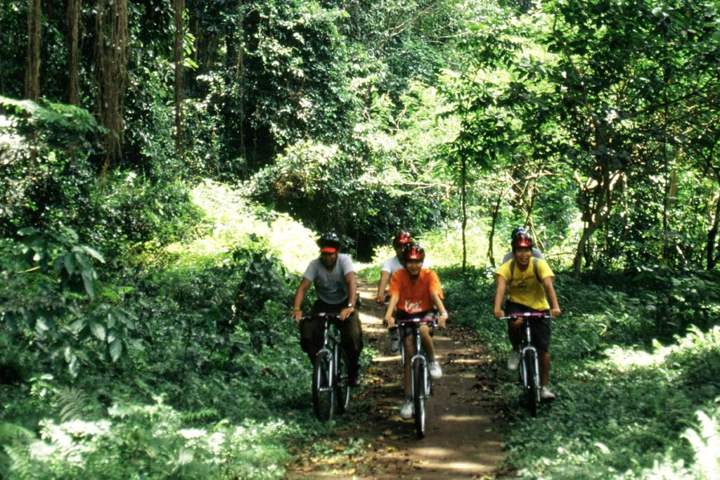 kintamani, mountain, cycling, kintamani cycling, cycling, tour, a true balinese, experience, cycling tour, a true balinese experience