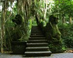 ubud, monkey forest, ubud, ubud monkey forest, bridge, bali, gianyar