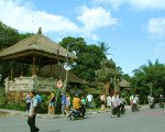 ubud elephant safari tour package