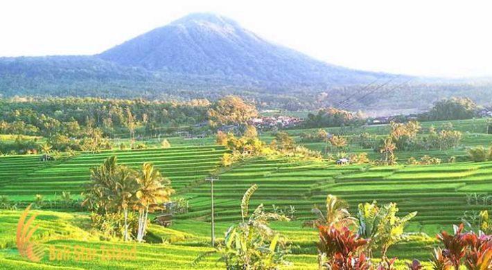 Batukaru Tour Bali