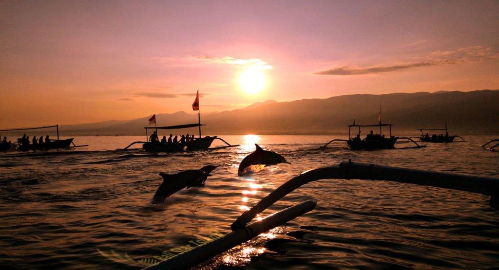 Dolphin Watching Singaraja Lovina Tours | Bali Tourist Activities