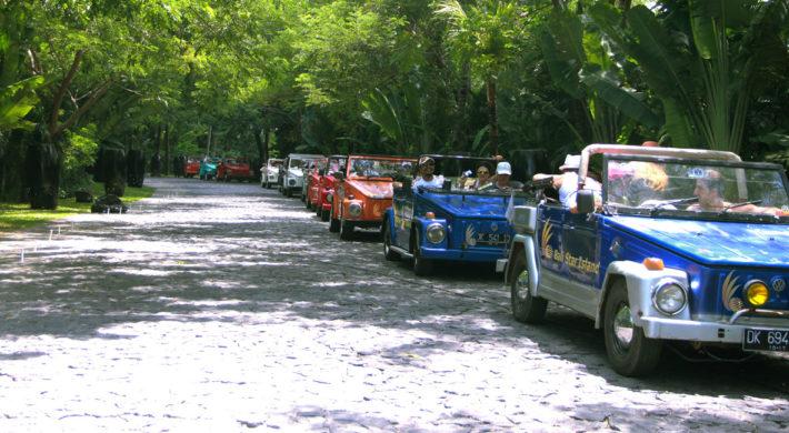 Bali VW Safari Car Charter