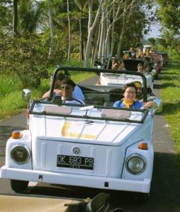 bali, vw safari, car charter, bali vw car, cw safari charter, vw safari car charter, bali vw safari car charter