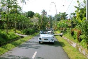 bali, vw safari, village, tours, bali vw safari tour, vw safari tour, village safari tour,