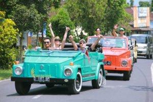 bali, vw safari, village, tours, bali vw safari tour, vw safari tour, village safari tour, bali village tour