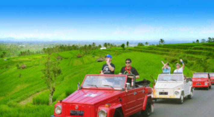 Jatiluwih Rice Terrace Expedition | Bali VW Safari Tours