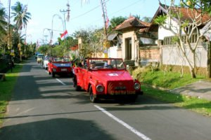 bali, vw safari, vw safari tours, rice paddy, bali vw safari, traditional village