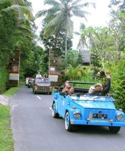 jatiuwih, bali, rice terrace tour, jatiluwih tour, jatiluwih rice terrace tour, vw safari, bali vw safari, vw safari tours, bali vw safari tours