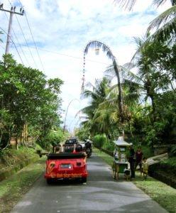 penglipuran, tampak siring, tours, bali, vw safari, penglipuran tour, tampak siring tour, bali vw safari tours