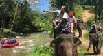 rafting elephant, rafting elephant packages, rafting package, elephant package