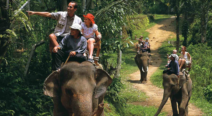 Bali Place of Interest | Explore Elephant Ride Tour