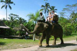 bali elephant camp, elephant camp, elephant ride, bali elephant ride