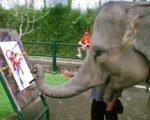 elephant painting show, bali elephant, bali elephant safari, bali elephant safari park