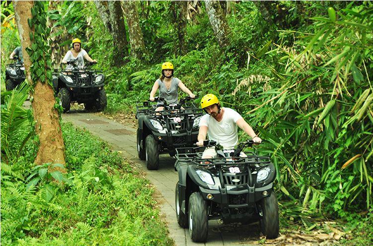 pertiwi, quad, adventure, atv, riding, atv riding, pertiwi quad, pertiwi quad adventure, quad adventure, atv adventure, jungle, path atv track