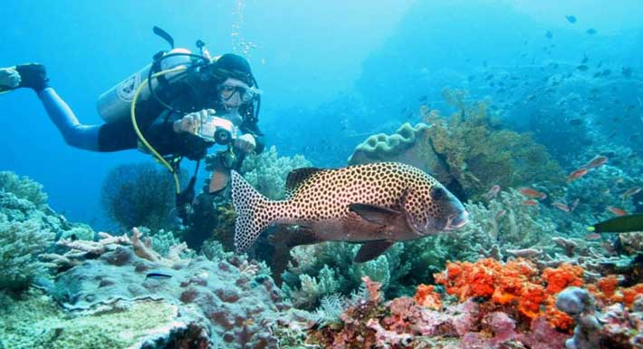 Bali PADI Advance Diving Course