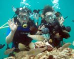 bali,  advance, padi dive certifications