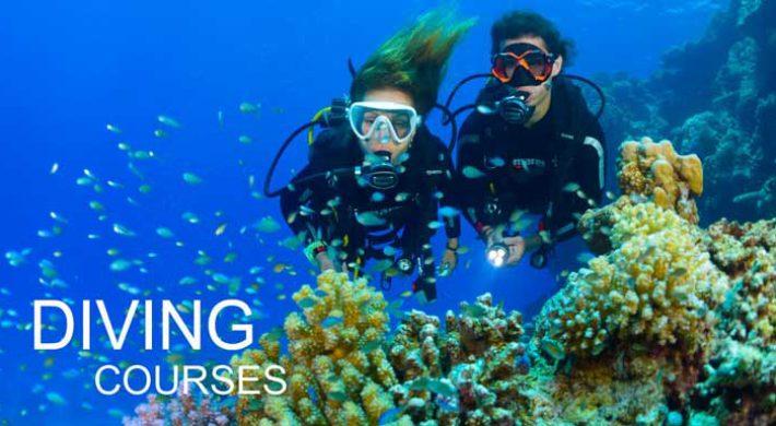Bali Diving Courses – Bali Dive Schools