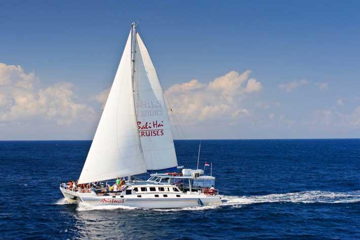 aristocat cruise