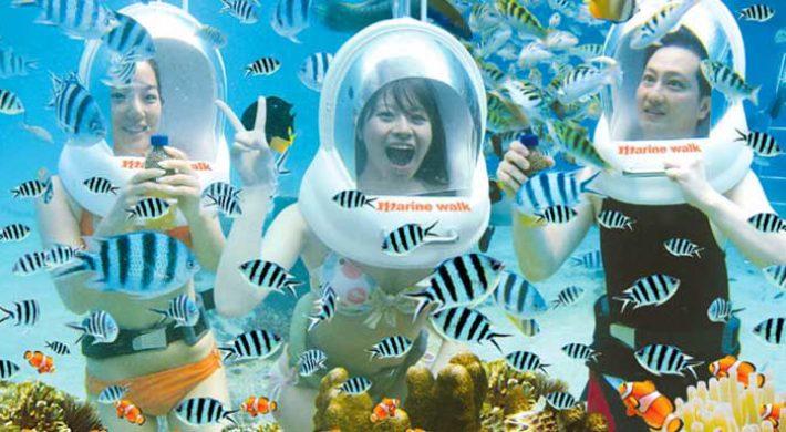Bali Marine Walk – Lembongan Underwater Tours