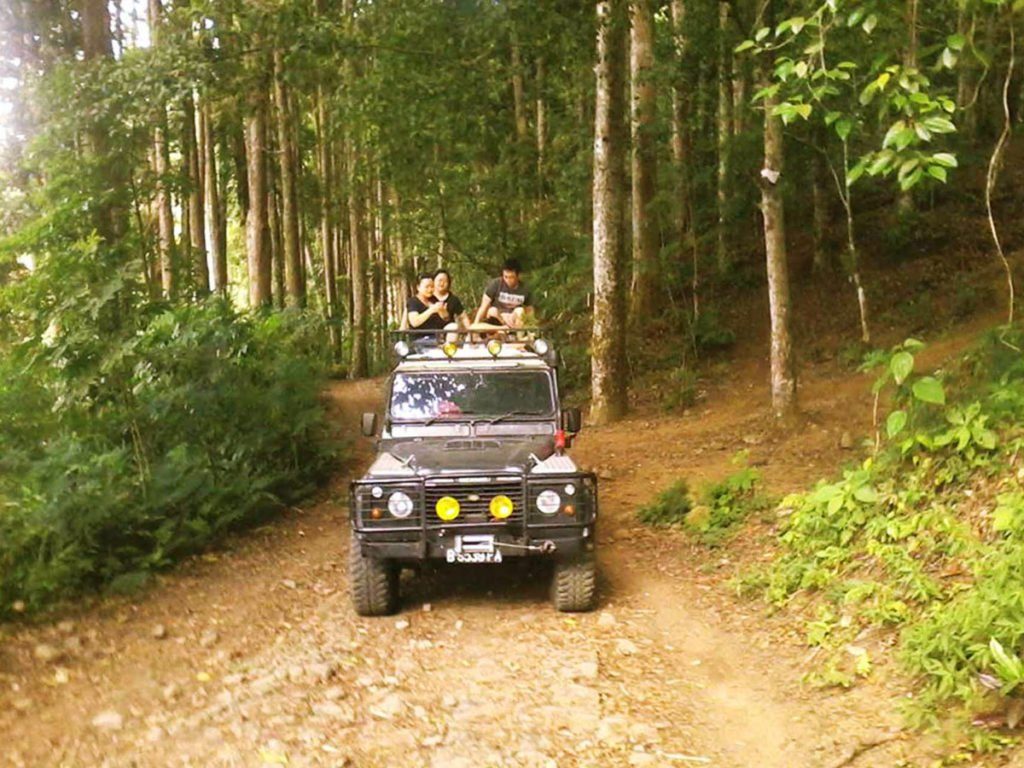 bali, jeep, adventure, land cruise, bali jeep, jeep adventure, bali jeep adventure, 4 wd, land cruises, bedugul, jungle track