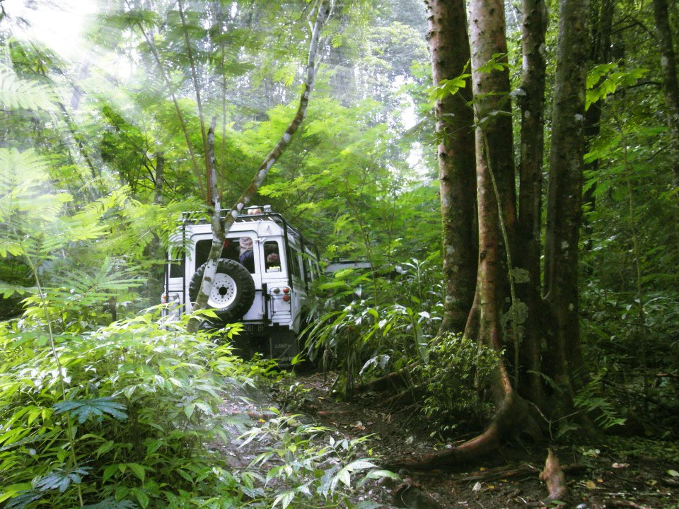 bali, jeep, adventure, land cruise, bali jeep, jeep adventure, bali jeep adventure, 4 wd, land cruises, tropical jungle