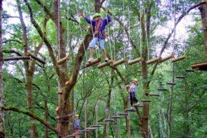 bali, treetop, adventure, park, bedugul, botanical garden, bali treetop, treetop adventure, tree top adventure park, bali treetop adventure park, bedugul botanical garden. kids, monkey track